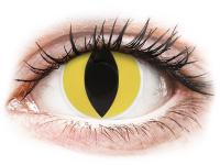 alensa.at - Kontaktlinsen - ColourVUE Crazy Lens - Cat Eye - ohne Stärke