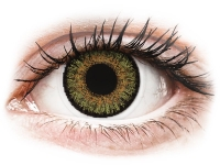 alensa.at - Kontaktlinsen - FreshLook One Day Color Pure Hazel - mit Stärke